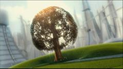 le chêne en fer
