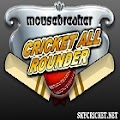 Play Cricket Allrounder Game Game