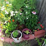 Gardening 2010, Part Two - 101_3267.JPG