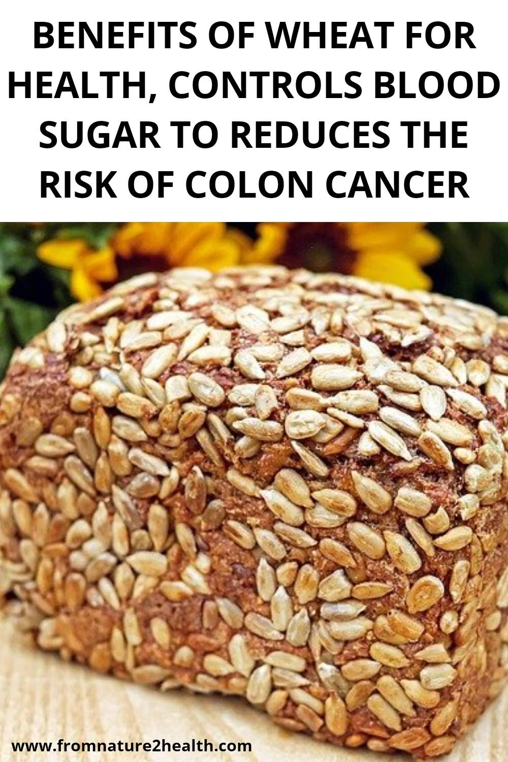 Benefits of Wheat for Health, Controls Blood Sugar to Reduces the Risk of Colon Cancer