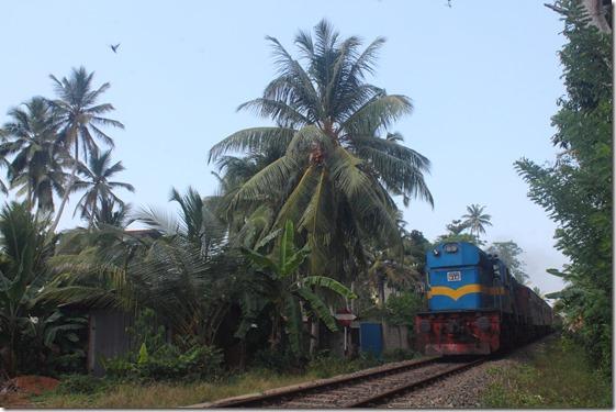 Хіккадува, поїзд