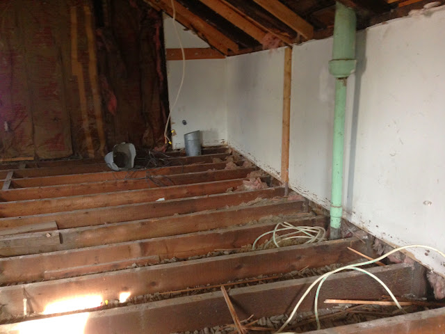 Renovation Project - IMG_0026.JPG