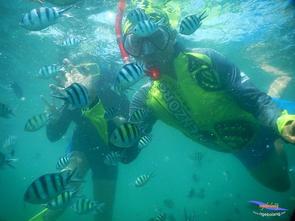 family trip pulau pari 140716 Nikon 22