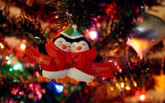 besplatne pozadine za desktop 1680x1050 free download blagdani Božić pingvini Merry Christmas