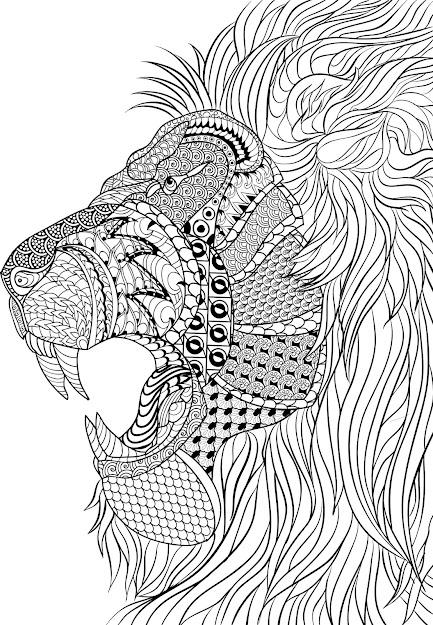 Mandala Designs Coloring Book With Dacedebdeca