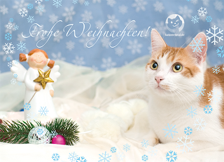 weihnachten_loui.png