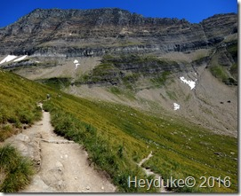 Highline Trail GNP MT 028