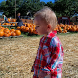 Pumpkin Patch - 115_8235.JPG