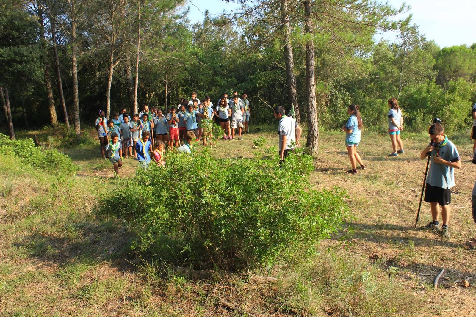 Campaments Estiu Cabanelles 2014 - IMG_0377.JPG