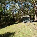 Blackbutt picnic area (384650)