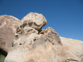 Cool looking boulder. Almost looks like a tortiose head if you squint your eyes.