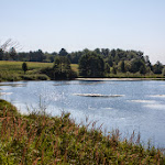 20140726_Fishing_Sergiyivka_053.jpg