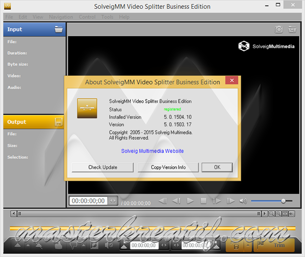 SolveigMM Video Splitter 5.0