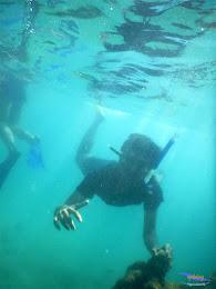 pulau pari, 23-24 mei 2015 26