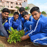 Gurukul Green Revolution (10).jpg