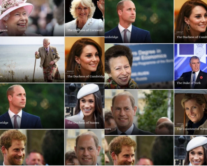 Harry and Meghan 'demoted' below Prince Andrew, and other royals on royal family website