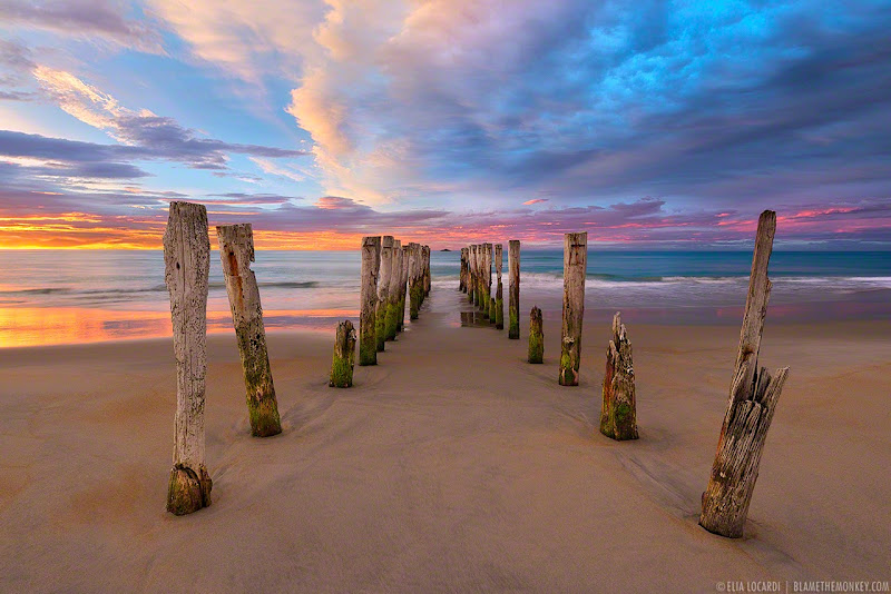 Colors and shapes blend beautifully with the morning sunrise on St Clair Beach in New Zealand. Photographer Elia Locardi