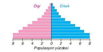 bir ülkedeki insanlara ait yaş dağılımı piramidi