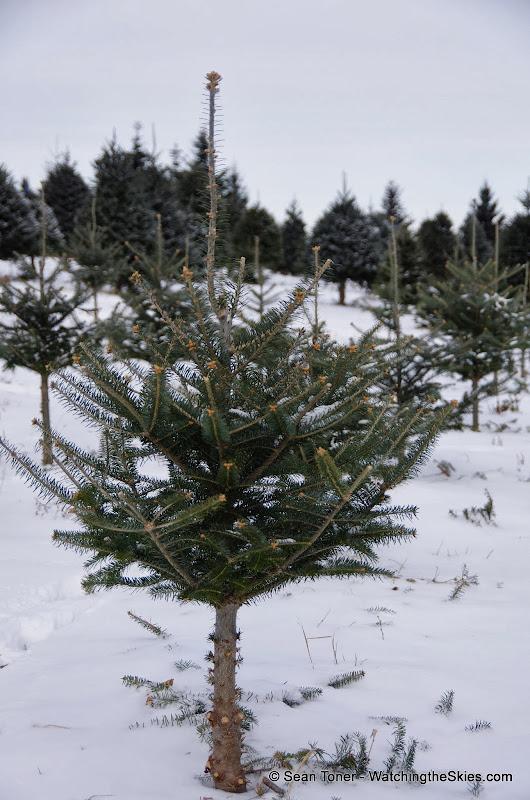 Vermont - Winter 2013 - IMGP0504.JPG