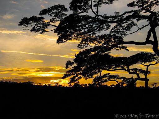 Wasi_Alagwa_Tanzania-2011-Kaylen-196photo