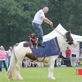 Paard & Erfgoed 2 sept. 2012 (15 van 139)