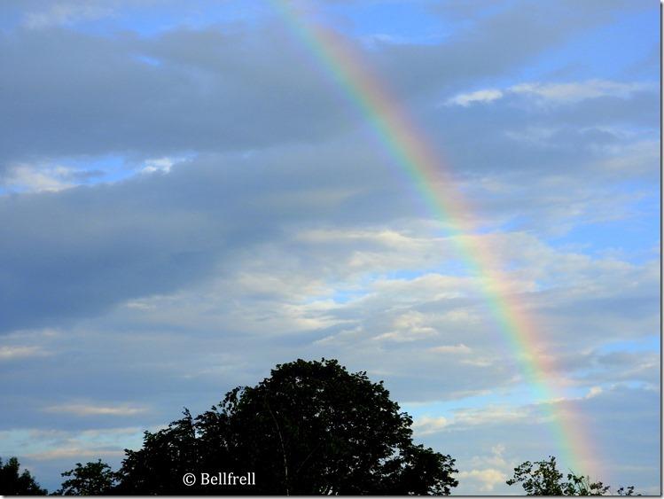 Morgenregenbogen 1