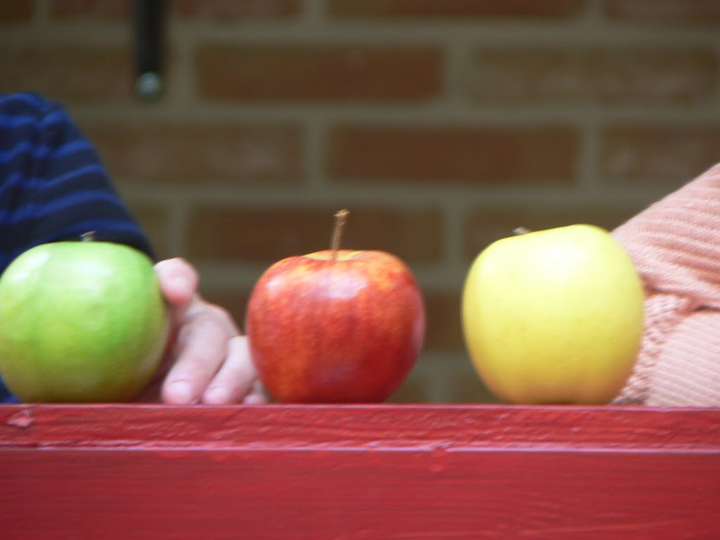 De Kleuters maken zelf een fruit- en groentewinkel. - P1260566.JPG