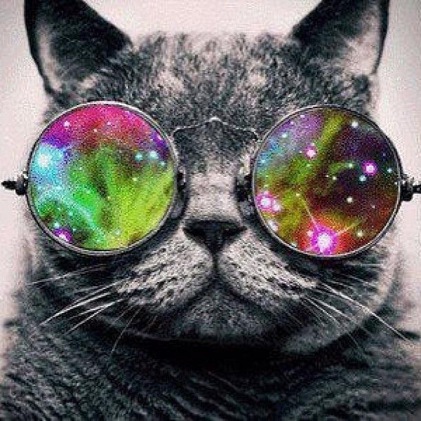 [gatos+galacticos++%282%29%5B3%5D]