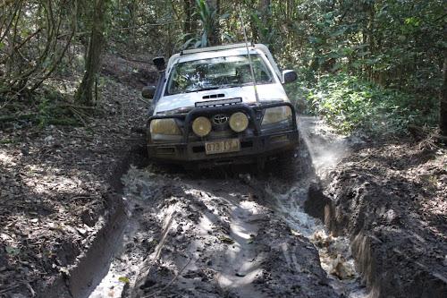 Nic finding Mud