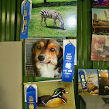 Fort Bend County Fair 2014 - 116_4224.JPG