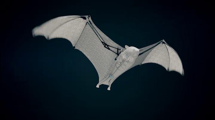 Летающие бионические роботы животные Festo