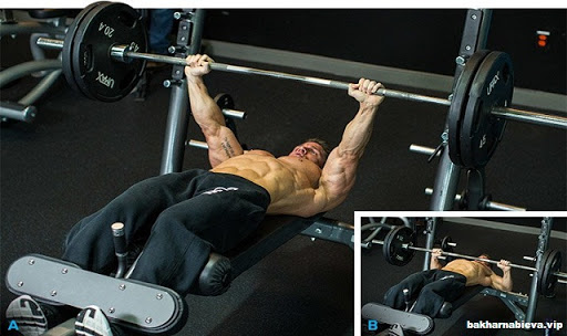 Decline Bench Press Exercise Guide