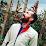 Emilio Ruiz Mateo's profile photo