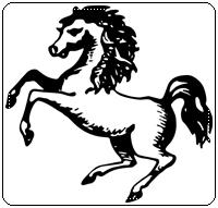 คำศัพท์ภาษาอังกฤษม้า