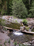 Paradise River; An older tire and 55-gallon drum washed up on the banks are evidence of a later mining operation on Eagle Peak.