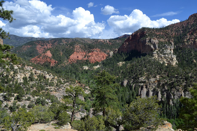 First Left Hand Canyon
