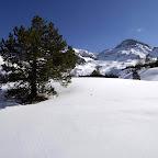 Pianoro a quota 2283 fuori dal Bois des Oules. Sfondo Turge de la Suffie 3024, L