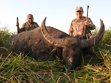 Mr Mark Martinko, USA with his 2nd buffalo bull. This old bull had a mate that would not back off and so we had a stand off for 5 minutes in the long grass until he decided it wise to wander off.