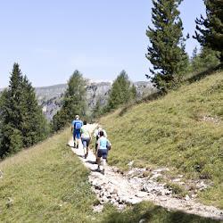 Wanderung Hanicker Schwaige 18.07.15-9006.jpg