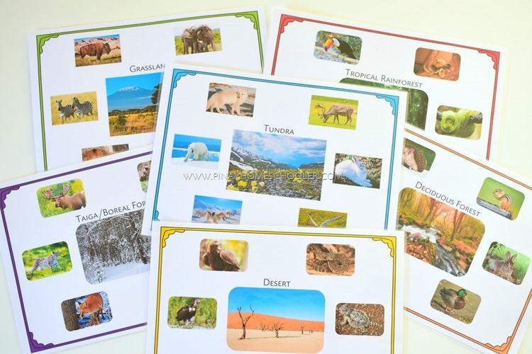 Animal Habitats Sorting Activity Control Sheets