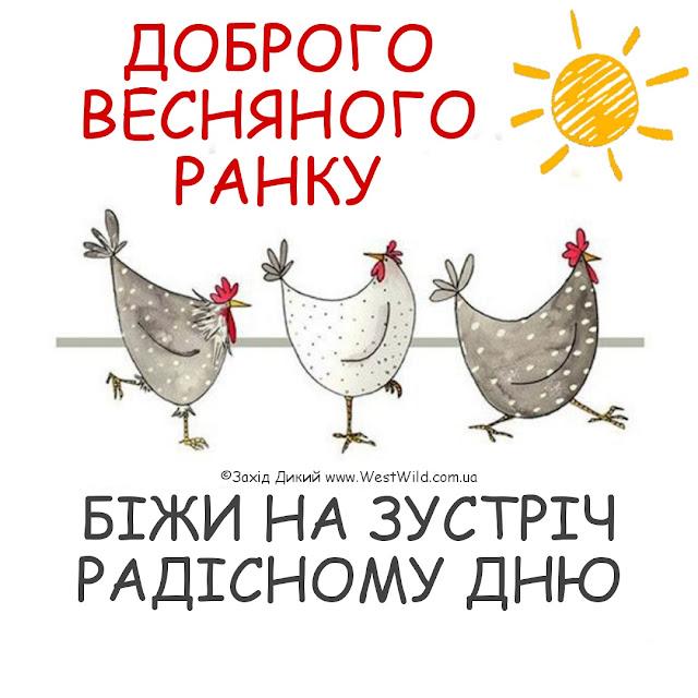 доброго ранку та гарного дня весна