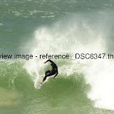 _DSC6347.thumb.jpg