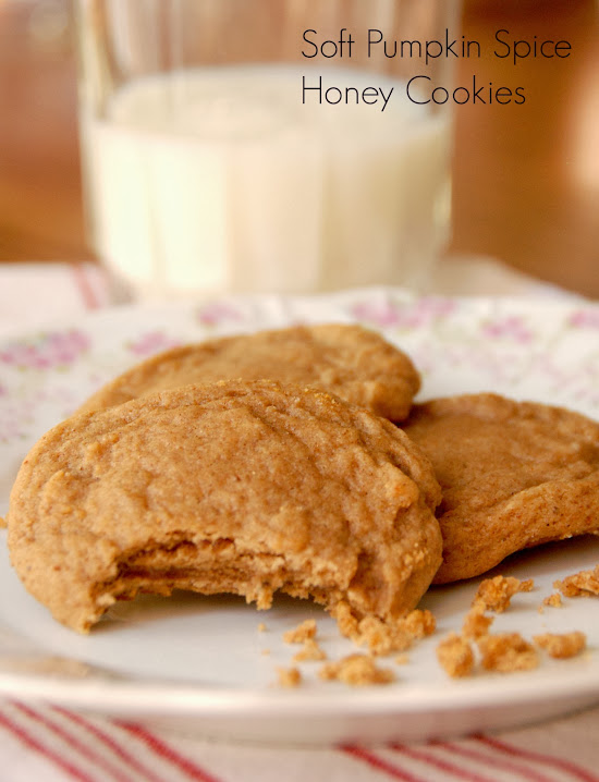Soft Pumpkin Spice Honey Cookies