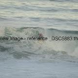 _DSC5883.thumb.jpg