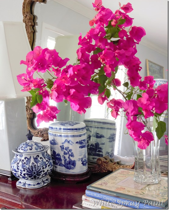Spring in the Nap Room Bougainvillea