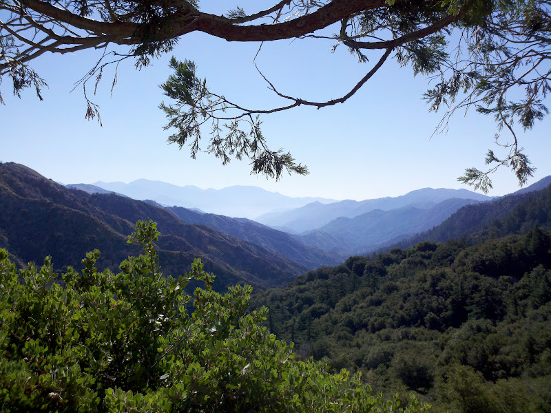 Angeles Crest Highway • View from Red Box
