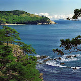 La côte de la mer du Japon où la taïga rejoint l'océan. Photo : Yuri Berezhnoi
