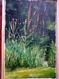 osty pod fortem, olej, płótno, 40x50 cm