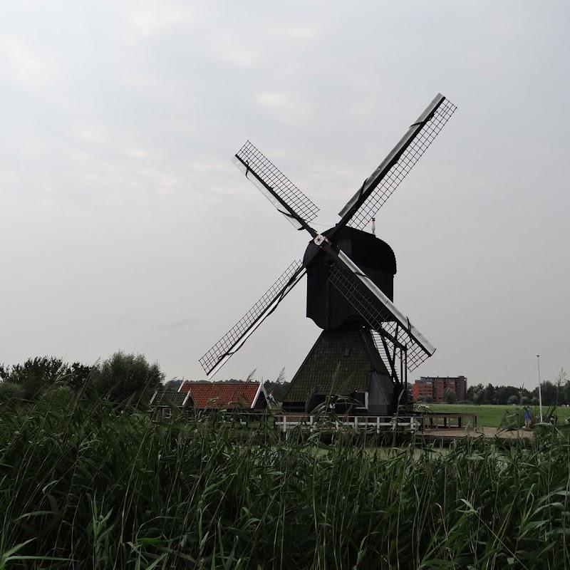 Day_6_Kinderdijk_38.JPG