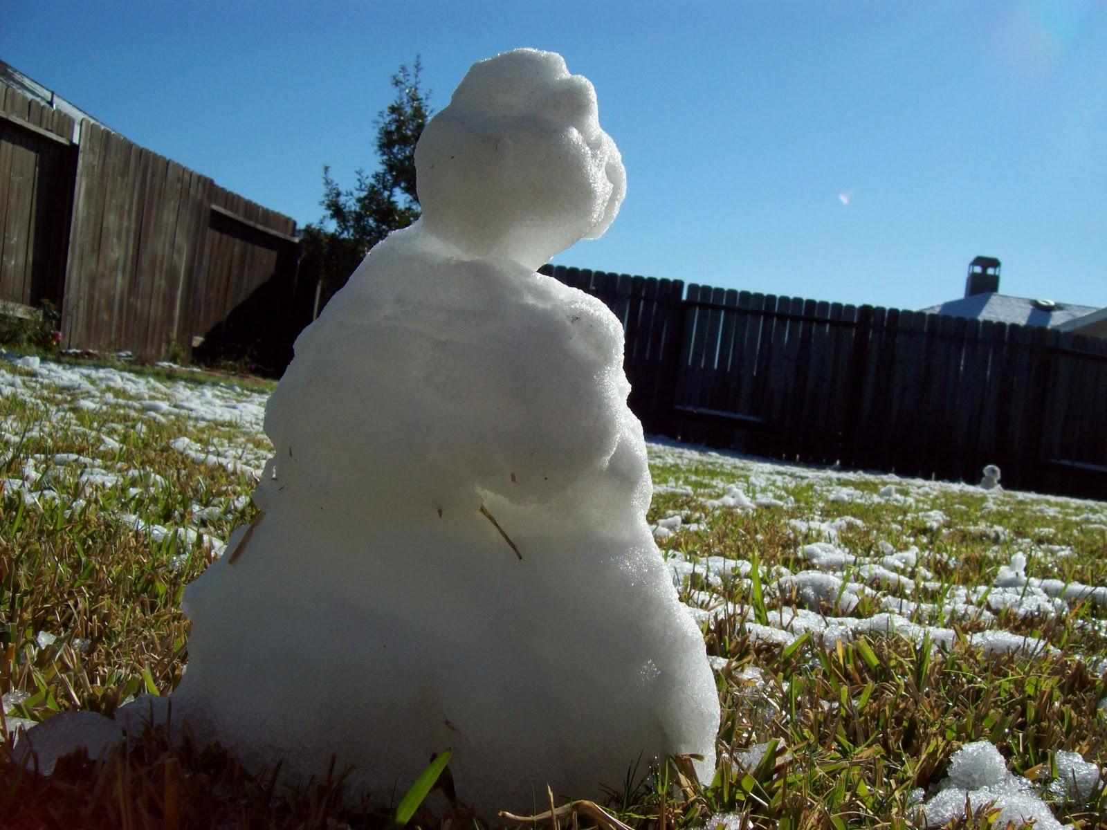 Snow Day - 101_5995.JPG